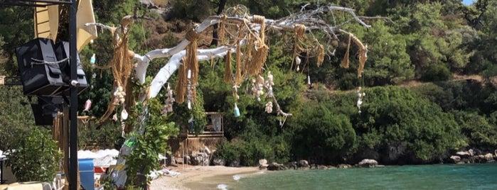 Çınar Beach Club is one of Lieux qui ont plu à sibel bakırcı özkoçan.