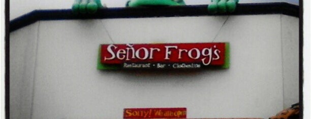 Señor Frog's is one of Cristina 님이 좋아한 장소.