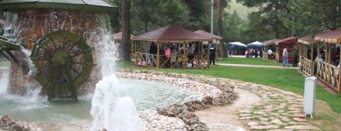 Paşabahçe Mesire Alanı is one of ertan : понравившиеся места.