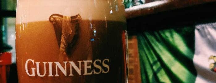 Publin Irish Pub & Restaurant is one of Locais curtidos por Rade.