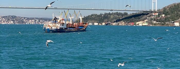 Boğaz Turu is one of Istanbul.