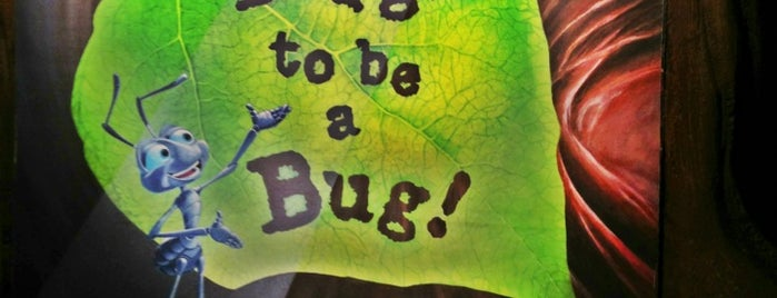 It's Tough to be a Bug is one of Next Trip To Disney.