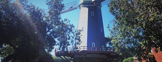Murphy Windmill is one of San Francisco.