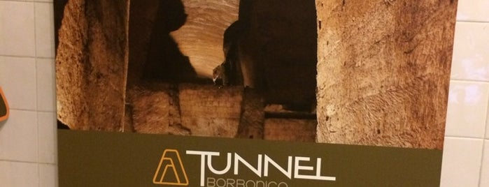 Tunnel Borbonico is one of NAPLES - ITALY.