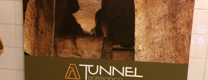 Tunnel Borbonico is one of สถานที่ที่บันทึกไว้ของ Ilaria.