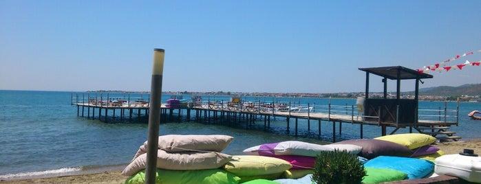 Palmera Beach Club is one of Lugares favoritos de Duygu.
