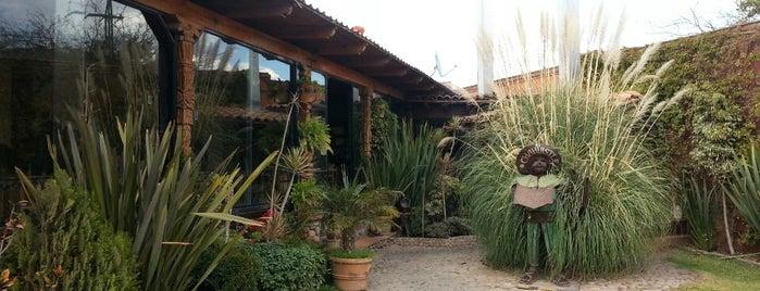 El Chahuistle is one of Orte, die Sandra gefallen.