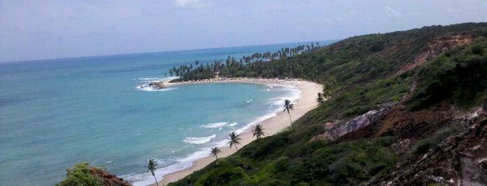 Praia de Coqueirinho is one of JPA São João.