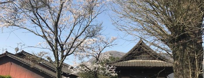 霊芝山明行寺 is one of 熊本探訪.