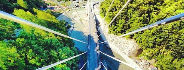 Вантовый мост по дороге Адлер - Красная поляна is one of Locais curtidos por Vlad.