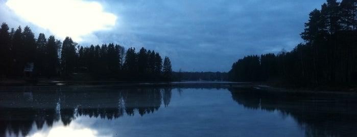 Река Широкая is one of Ignaty : понравившиеся места.