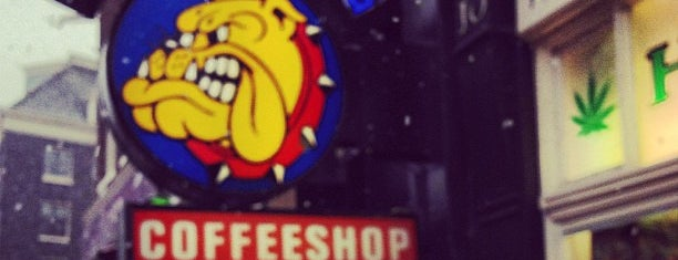 The Bulldog Rockshop is one of Europe.