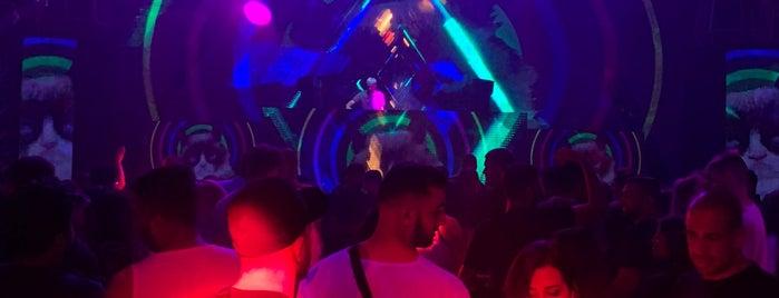 Illusion Night Club is one of Lieux qui ont plu à Patricio.