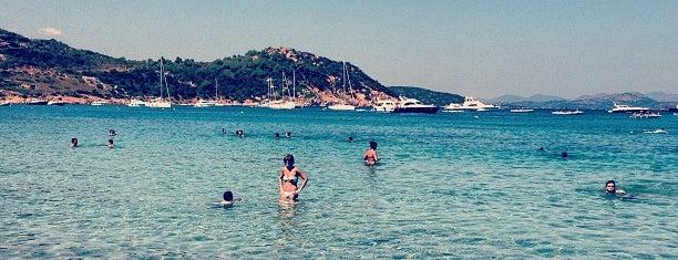 Spiaggia Capo Coda Cavallo is one of Sardinia.
