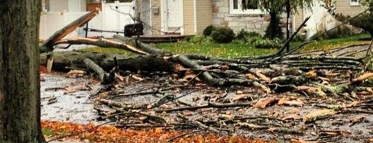 Frankenstorm Apocalypse - Hurricane Sandy is one of บันทึกเดินทาง New York.