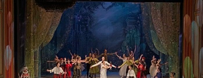 Ankara Devlet Opera ve Balesi is one of Tempat yang Disukai Kubilay.