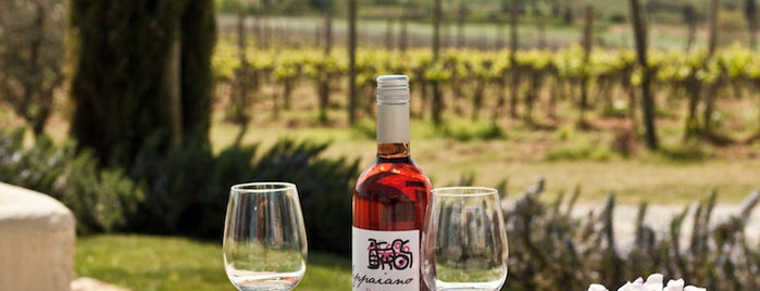 Poggio al Casone wine resort is one of Hotel & BB.