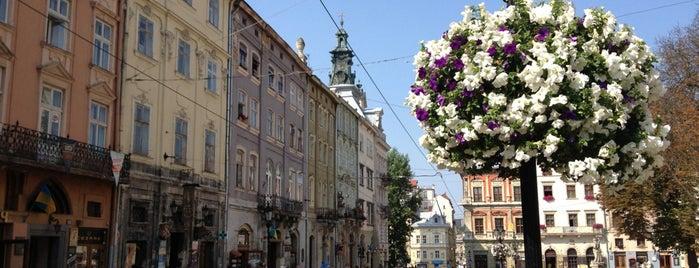 Площа Ринок is one of Львов.