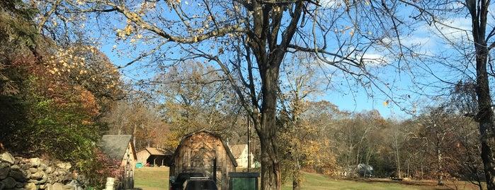 White Oak Farm is one of westchester.