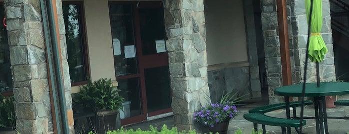 One Dish Cuisine Is Of Howard County Gluten Free Friendly Restaurants