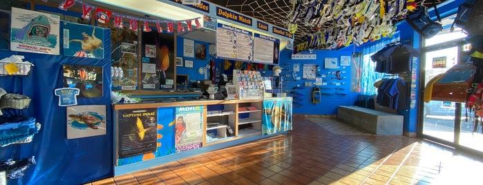 Snorkel Bob's Oahu is one of Lieux qui ont plu à Ailie.