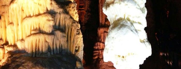 Postojnska Jama / Postojna Cave is one of visit again.