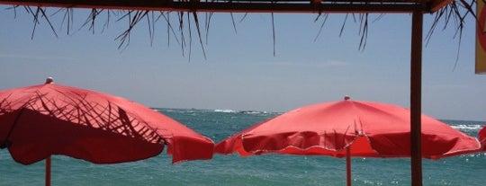 Flamingo Restaurant & Cafe is one of Shaddawn 님이 좋아한 장소.