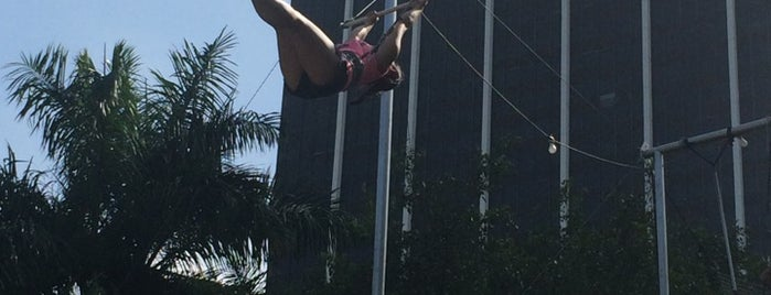 The Flying Trapeze School is one of Activities.
