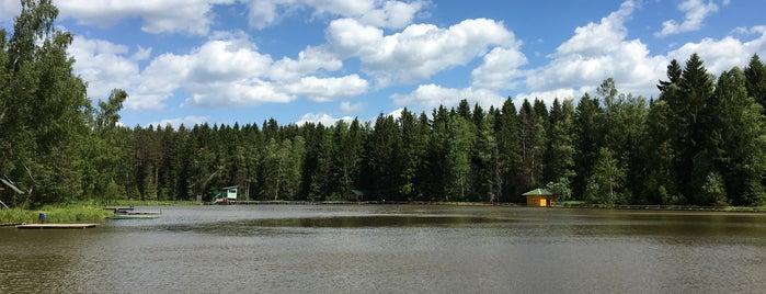 Рыбалка в Хомякове is one of Posti salvati di Денис.