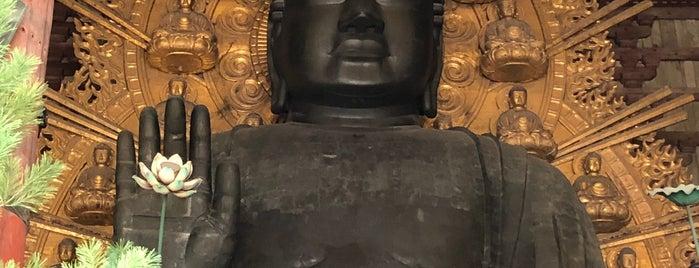 Vairocana Buddha (Nara no Daibutsu) is one of Lieux qui ont plu à Chris.