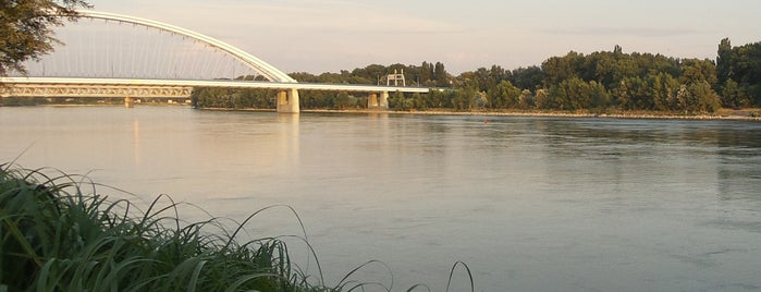 Dunaj | Danube is one of Slovakia: Dining, Coffee, Nightlife & Outings.