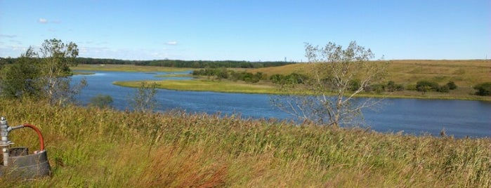 Freshkills Park is one of The Great Outdoors NY.