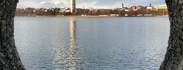 Tidal Basin is one of Posti salvati di Bill.