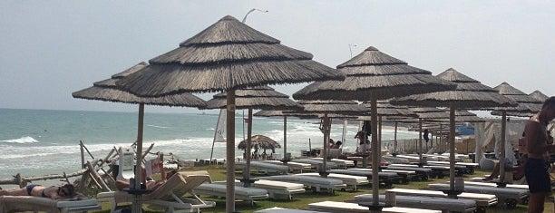 Guna Beach is one of Future sites.