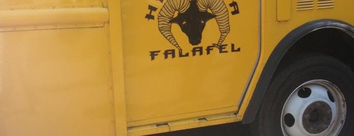Hellava Falafel is one of Amazon Campus (SLU) Lunch Spots.
