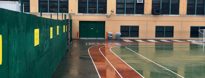 PS 58 (Carroll School) is one of Play Like a Local: Regular NYers Doing What We Do.