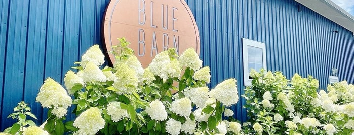 Blue Barn Cidery is one of Take zucchini.