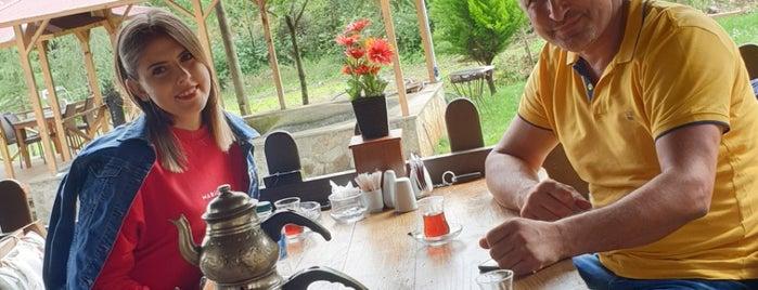Yeşil Vadi Yöresel Et Balık Restaurant is one of cafelerim.