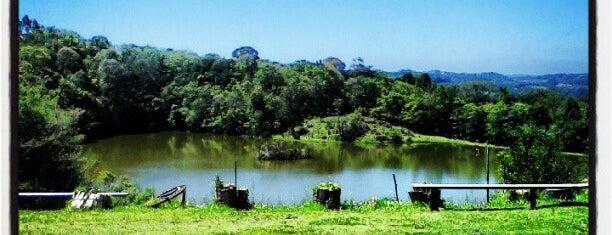 Flores da Cunha is one of Cidades do Rio Grande do Sul.