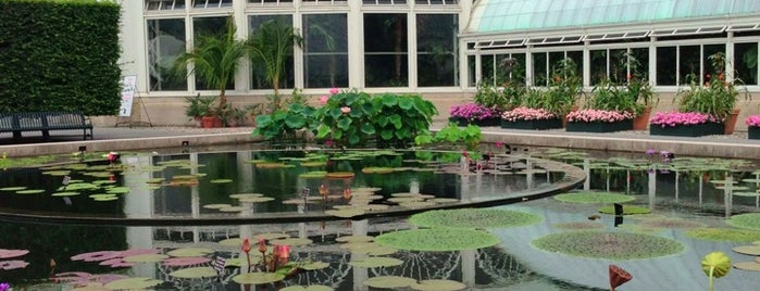 The New York Botanical Garden is one of New York, New York.