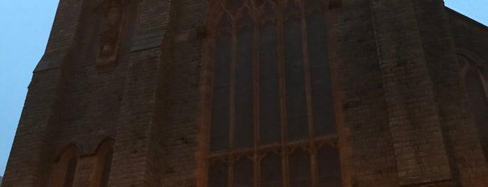St David's Metropolitan Cathedral is one of Orte, die Carl gefallen.