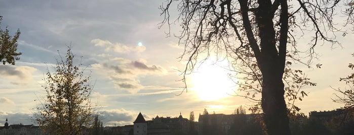 Žofín | Slovanský ostrov is one of Praha - Prague - Praga.