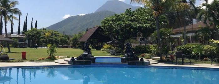 Kartika Wijaya Batu Heritage Hotel is one of สถานที่ที่ Erin ถูกใจ.