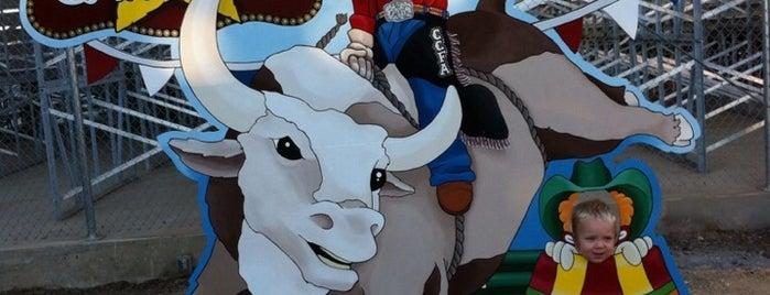 Comal County Fairgrounds is one of Posti che sono piaciuti a Rita.