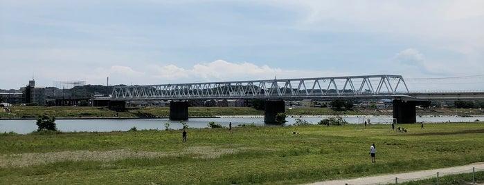 多摩川河川敷 is one of Tempat yang Disukai モリチャン.