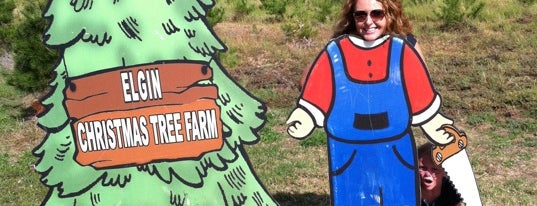 Elgin Christmas Tree Farm is one of Lieux qui ont plu à Lyndsy.
