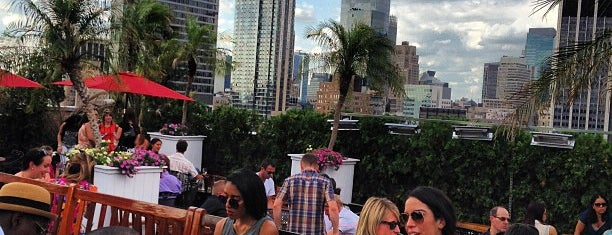 230 Fifth Rooftop Lounge is one of NY Tour Brunch.