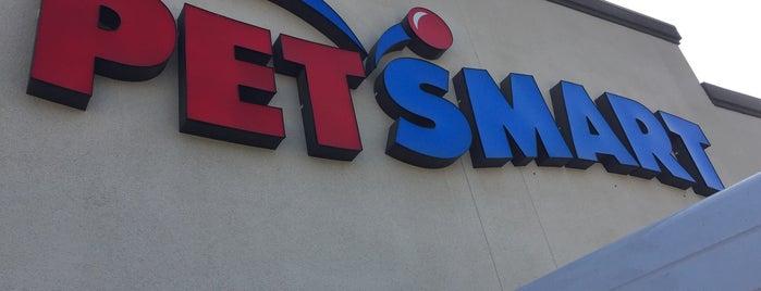 PetSmart is one of Lieux qui ont plu à Evangelina.