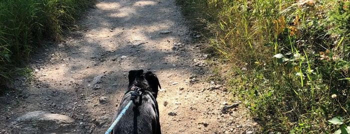 black elk trail is one of Lieux qui ont plu à Lars.