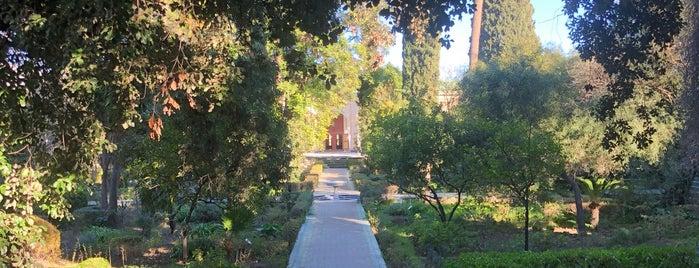 Museum Dar Batha is one of Lugares favoritos de Carl.